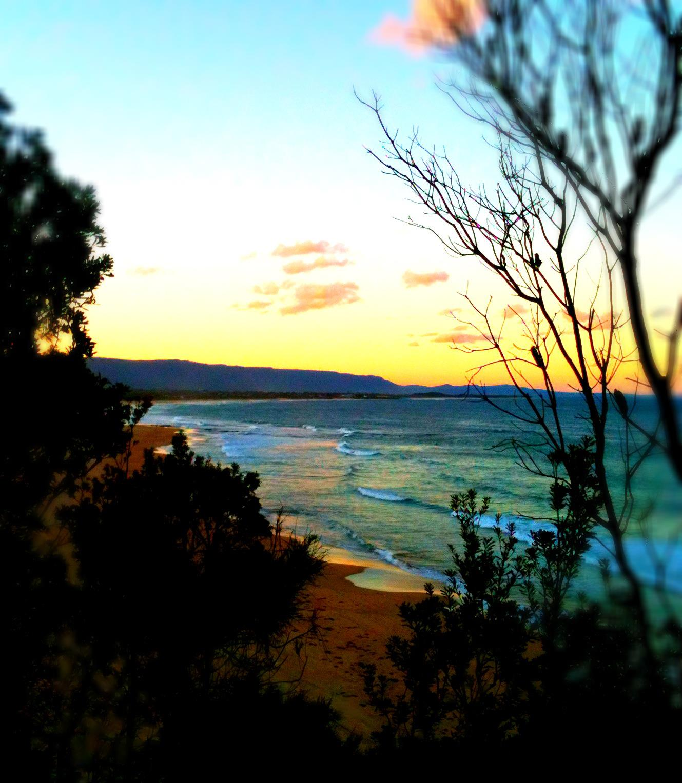 Bushcare Summer Sunset Walks 2018
