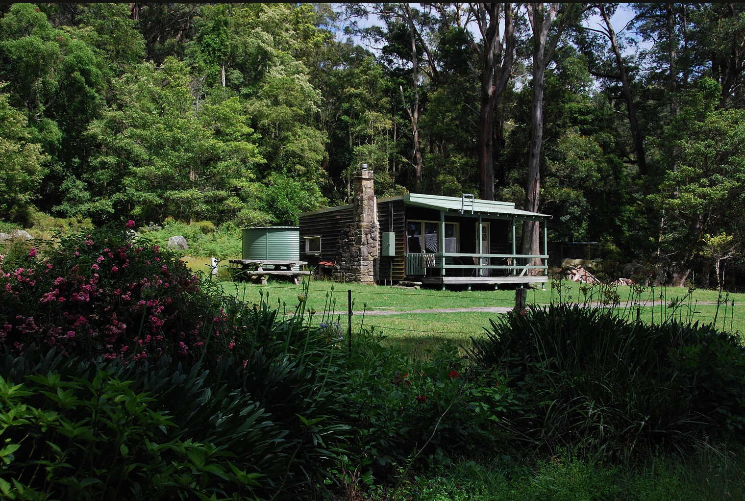 March 24-25   Get to know the forest of the Illawarra escarpment