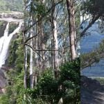 March 24-25   Jamberoo Mountain Nature Workshop